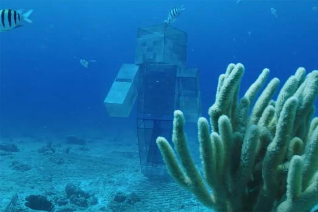THIS IS HOW MINECRAFT IS HELPING TO REPAIR REAL CORAL REEFS IN MEXICO